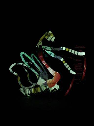 Mantis Projection