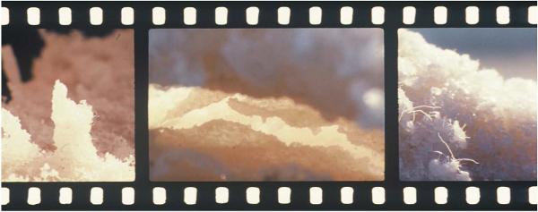 "A still from Tacita Dean&squot;s new film ""JG."" Photo courtesy Canary Promotion"